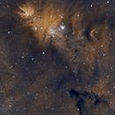NGC 2264 - Cone Nebula,                                Serge P.