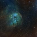 IC 410 Tadpole Nebula,                                chuckp