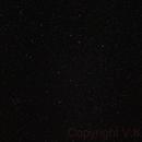 Leo Constelation,                                Vencislav Krumov