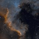 NGC 7000,                                Jari Saukkonen