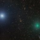 Comet C/2020 M3 (ATLAS) approaching Bellatrix,                                Shannon Calvert