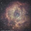 Rosette Nebula | NGC2237 ,                                AndreP