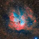 Tadpole Nebula HORGB,                                Alessio Pariani
