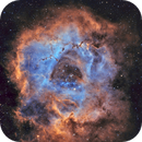 NGC 2244 Rosette IN SHO colors,                                Dawn Lowry