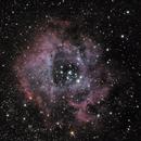 Rosette Nebula,                                Alex