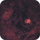 NGC 6604 in Serpens,                                Gerson Pinto