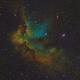 NGC 7380 - Wizard of SHO,                                HomerPepsi