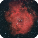 Rosette Nebula NGC 2037,                                Stefano Franzoni