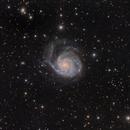 M101 LRGB Image,                                Eric Coles (coles44)