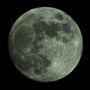 Mond 2017-03-11,                                Bruno