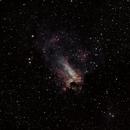 Swan Nebula,                                Raoul Duke