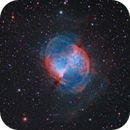 """M27 """"Dunbbell Nebula"""",                                Giorgio Ferrari"""