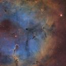The Elephant's Trunk Nebula (IC1369) imaged in SHO,                                Andrew Klinger