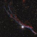 IC 1340 Cirrusnebel,                                Tom.K.