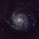 M101,                                Nadir Benhamouda