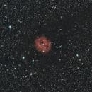 Ic 5146-Nébuleuse du cocon- RHaRvb-DSLR,                                Francis Couderc