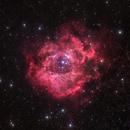 Rosette Nebula,                                Stacey Williams