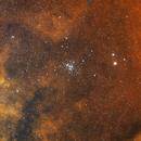 NGC 6231 The Northern Jewel Box Cluster,                                David Nguyen
