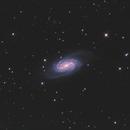 NGC2903 LRGB,                                Christopher Gomez