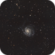 M101,                                Tom KoradoxTom