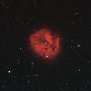IC 5146 - Cocoon Nebula HOO,                                Mike Hislope