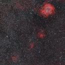 South of Rosetta,                                Astro-Wene