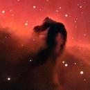 My RASA8 the horsehead nebula,                                Victor