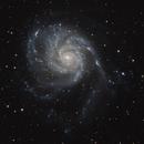 M101,                                Christopher Dietz