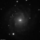 NGC 7015 possible supernova ~July 2012,                                Matthew