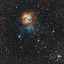 Nebulosa Trifida,                                Rino