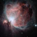 M42 Orion,                                Shane Gilbert