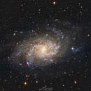 M33 Triangulum Galaxy,                                Paweł Radomski