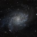 M33,                                PhotoMicQ