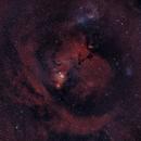 Cone Nebula in wide field,                                Prem K