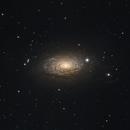 Sunflower Galaxy,                                John Renaud