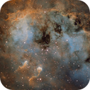 IC 410, The Tadpoles (close-up),                                Ruben Barbosa