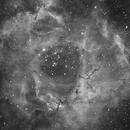 Rosette Nebula (redux),                                LewisM
