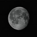 November Pandemic Moon,                                Timothy Martin & Nic Patridge