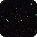 Surfboard Galaxy (M108) and Owl Nebula (M97),                                Chief