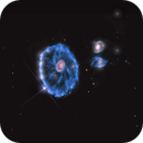 The Cartwheel Galaxy - Hubble Space Telescope,                                Rudy Pohl