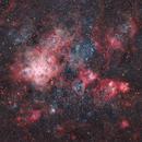 Tarantula Nebula - NGC2070,                                Adriano