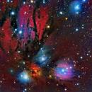 NGC 2170 (ANGEL NEBULA),                                JAIME FELIPE RAMIREZ NARVAEZ