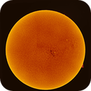 A sleeping Sun - 53 Mp H-Alpha Mosaik,                                Thomas Klemmer