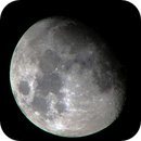 luna 02/01/2015,                                NOVATO1005