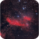 IC 4628: The Prawn Nebula,                                Tiago Ramires Domezi