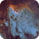 IC 5070 The Pelican Nebula /SHO,                                Marc Verhoeven