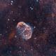 Crescent Nebula NGC6888 HOO,                                Philippe Oros