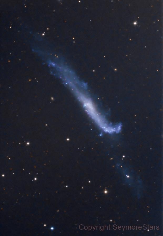 NGC 4656 and NGC 4657 The Hockey Stick (Crowbar) Galaxy,                                Seymore Stars