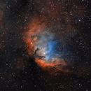 Sh2-101 & Black Hole Bow Shock,                                Gary Imm