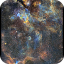 Butterfly and the Crescent Nebulae,                                Metsavainio